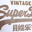 Superdry Vintage Logo Authentic Mid Weight T-Shirt Optic
